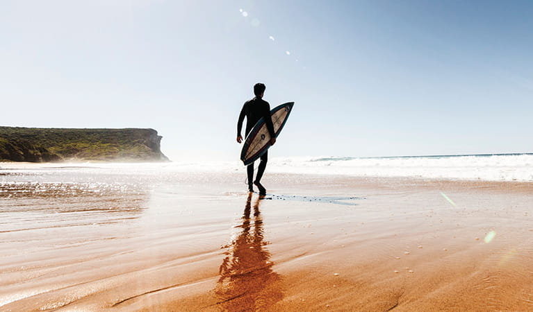 Surfer at Garie beach in Royal National Park. Photo: David Finnegan/OEH