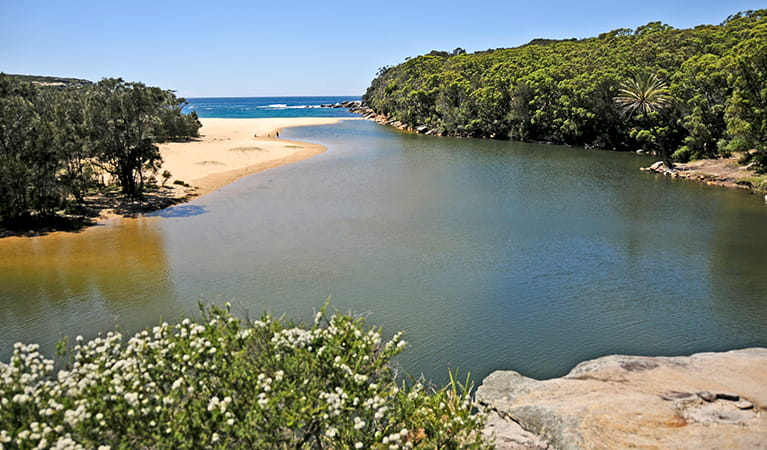 Views over Wattamolla lagoon and beach in Royal National Park. Photo: K.McGrath/OEH