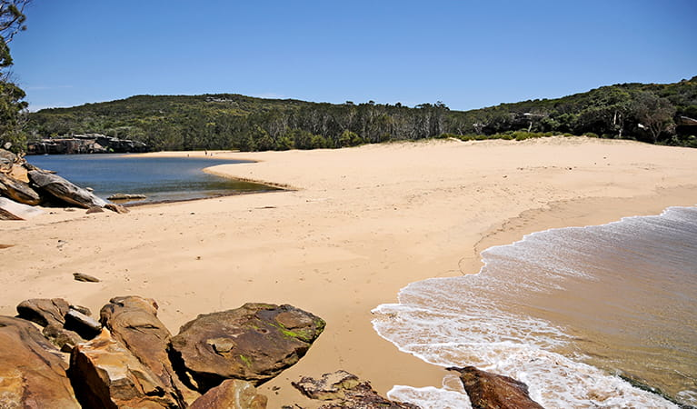Wattamolla Beach and picnic area, Royal National Park. Photo: Kevin McGrath/OEH