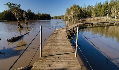Longneck Lagoon walking track. Photo: John Spencer