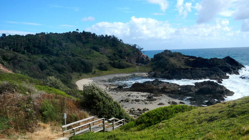 Port Macquarie Coastal walk, Sea Acres National Park. Photo: Debby McGerty
