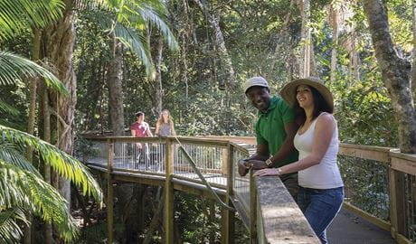 A couple enjoys the Sea Acres Rainforest boardwalk. Photo: John Spencer/OEH