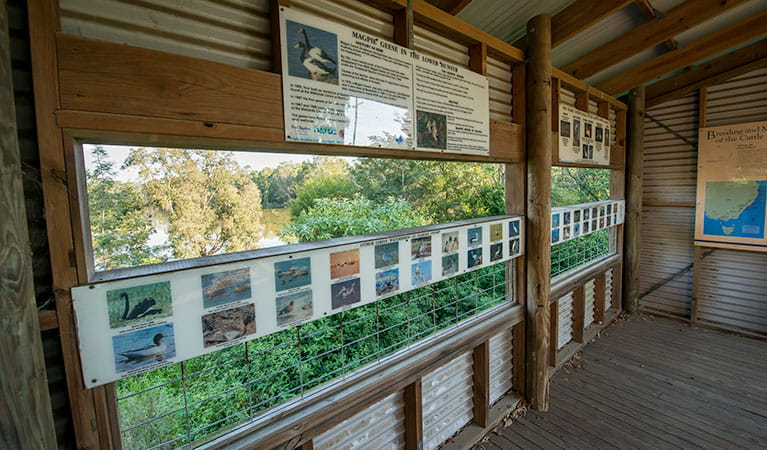 Seaham Swamp Bird Hide, Seaham Swamp Nature Reserve. Photo: John Spencer