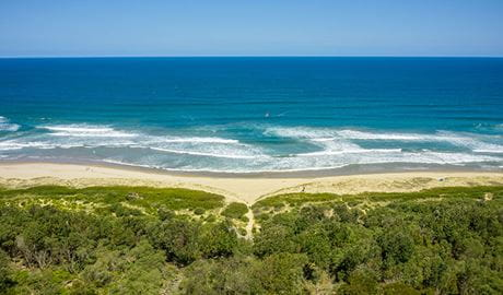 An aerial view of the path to the beach from Beach Road picnic area in Seven Mile Beach National Park. Photo: John Spencer © DPIE