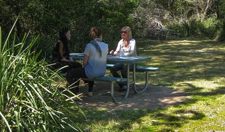 Gerroa Picnic Area, Seven Mile Beach National Park. Photo: P Lunnon
