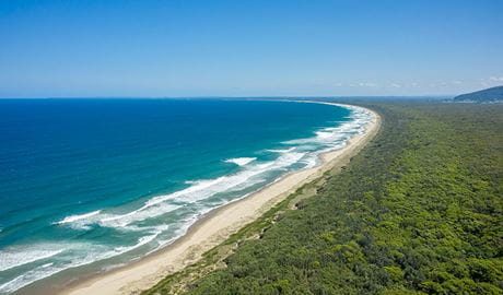 View of Seven Mile Beach looking south in Seven Mile Beach National Park. Photo: John Spencer © DPIE