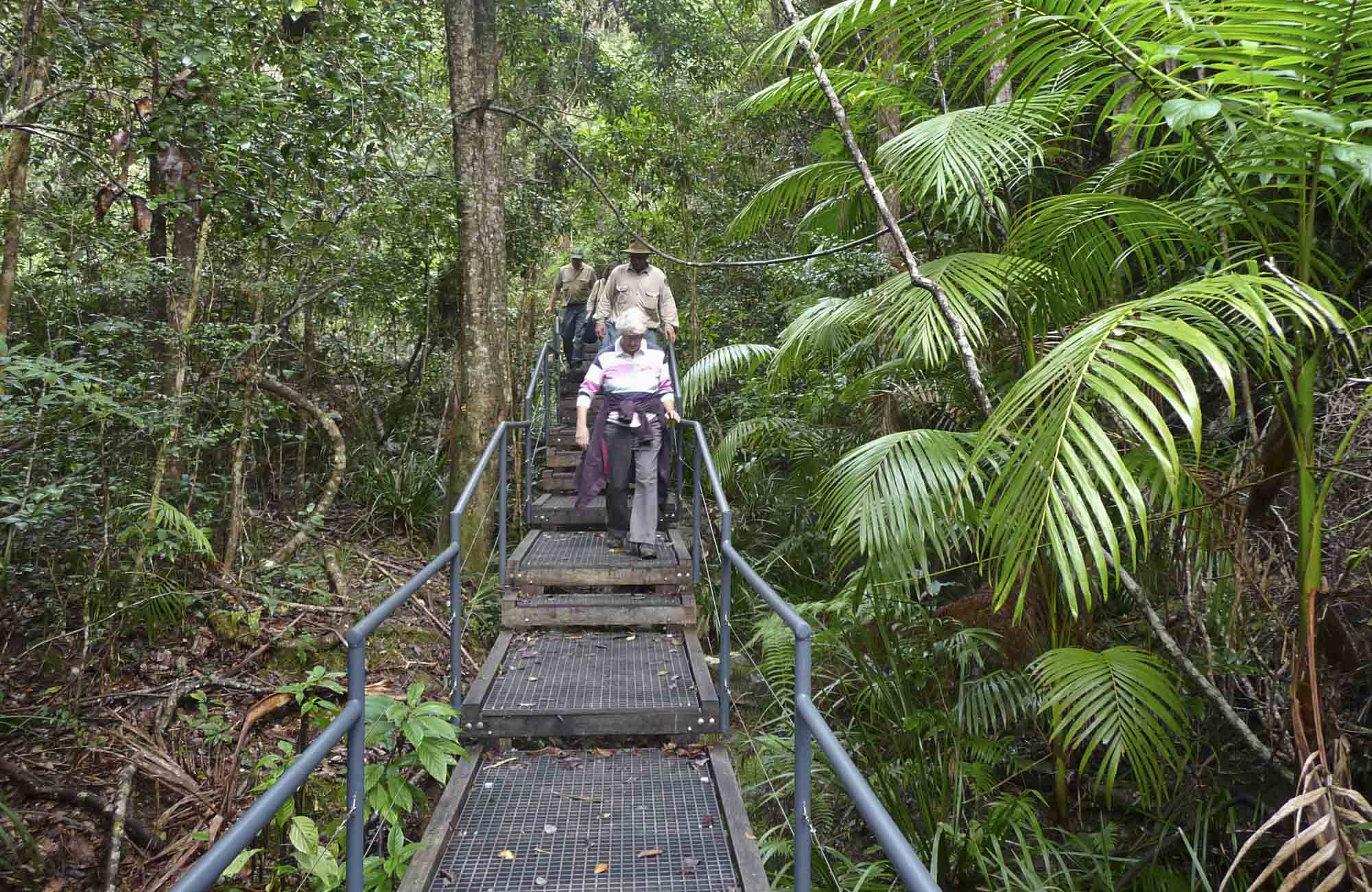 Falls walking track, Sherwood Nature Reserve. Photo: B Webster