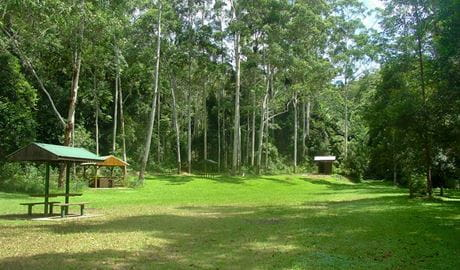 Woolgoolga Creek picnic area, Sherwood Nature Reserve. Photo: L Rees