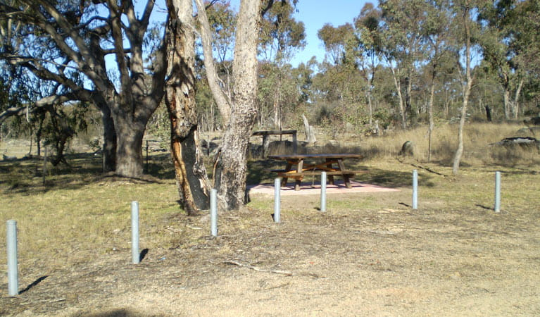 Stonewoman Aboriginal Area. Photo: NSW Government