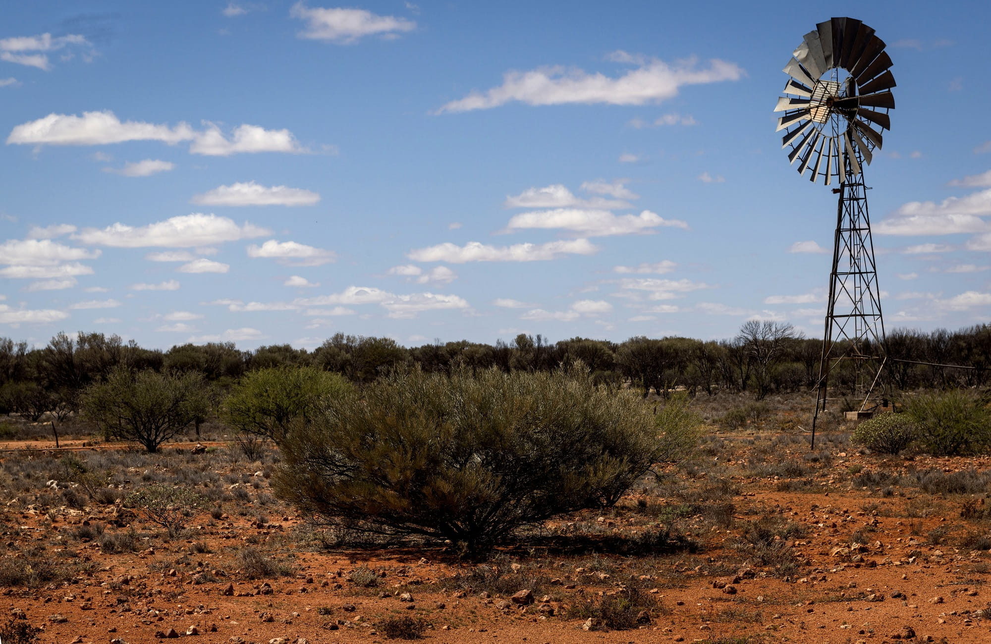 Windmill in Sturt National Park. Photo: John Spencer/OEH