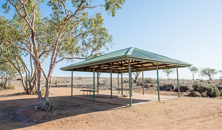 Shelter with benches at Dead Horse Gully campground. Photo: John Spencer