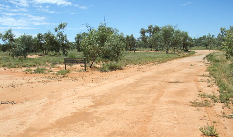 Red sand road, Fort Grey campground, Sturt National Park. Photo: OEH