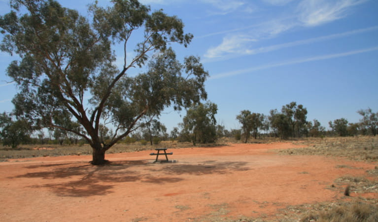 Picnic table at Fort Grey campground, Sturt National Park. Photo: John Spencer, OEH