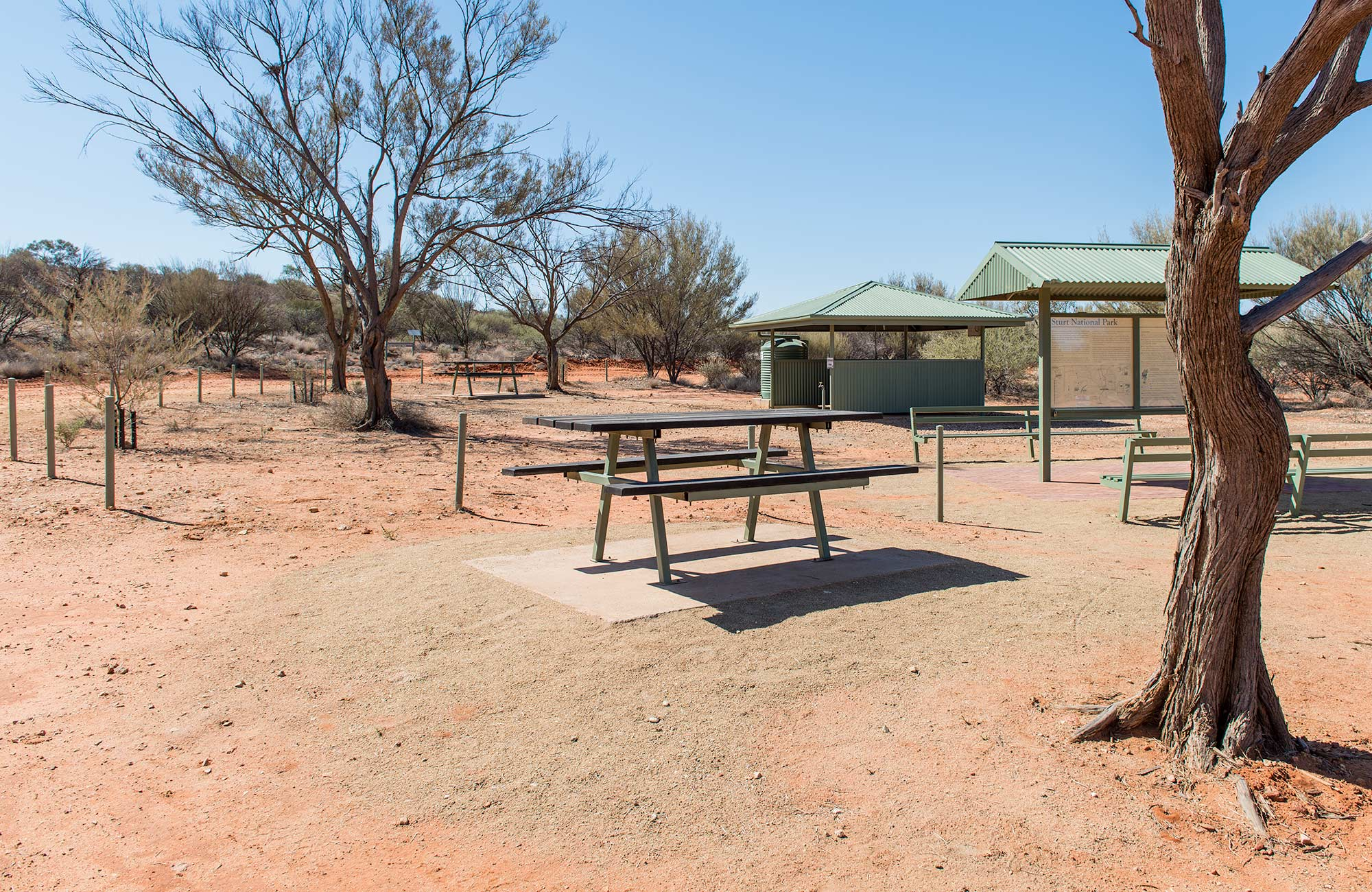 Olive Downs campground, Sturt National Park. Photo: John Spencer
