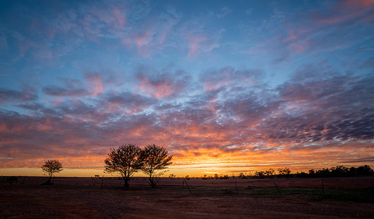 A colourful pink, purple and orange sunrise in Sturt National Park. Photo: John Spencer/DPIE