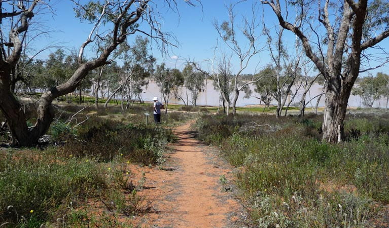 The Wells walk walking track, Sturt National Park. Photo: Natalie Middleton