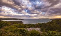 Dobroyd Scenic Drive, Sydney Harbour National Park. Photo: David Finnegan/OEH