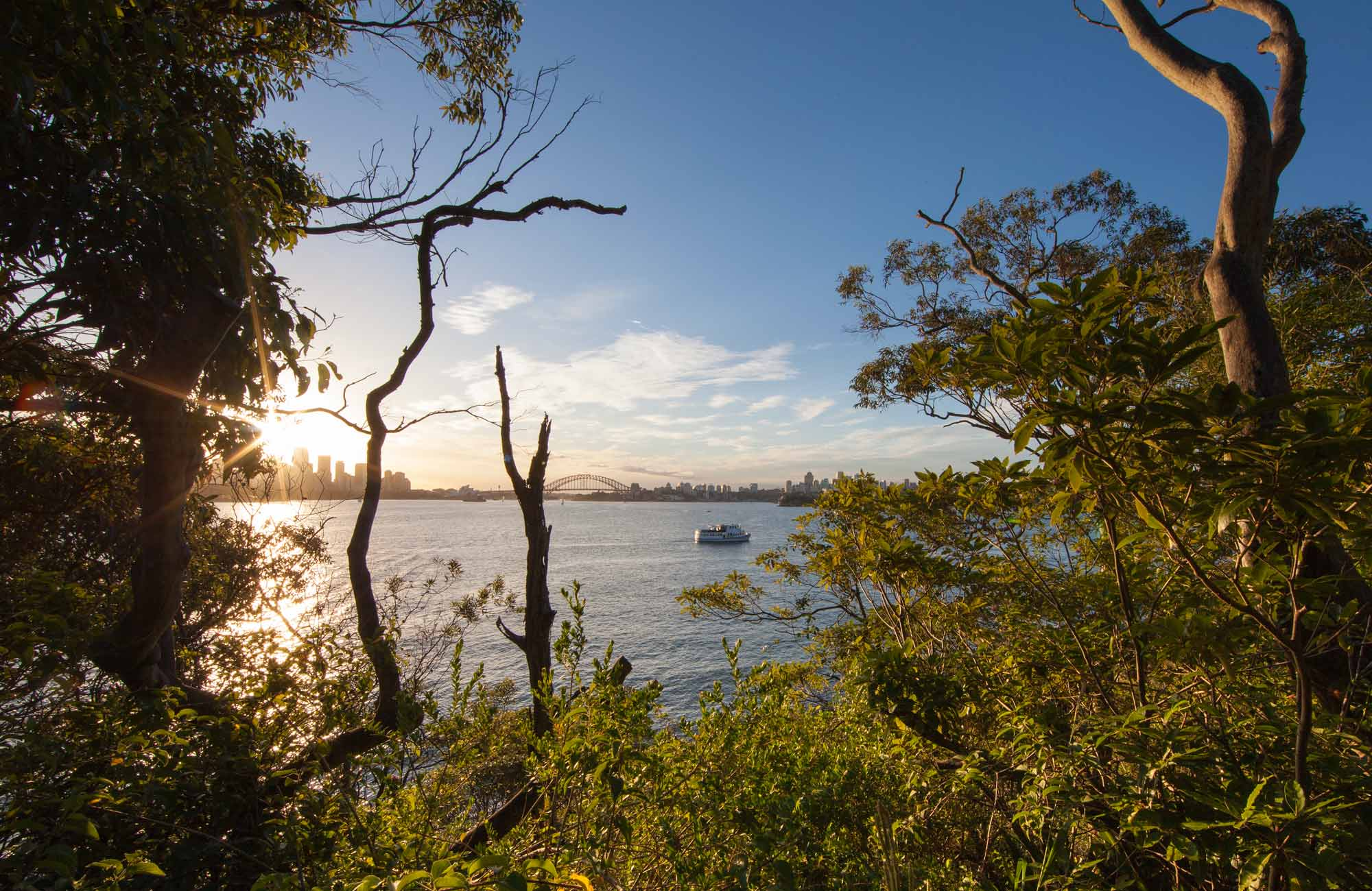Bradley's Head Walk, Sydney Harbour National Park. Photo: David Finnegan