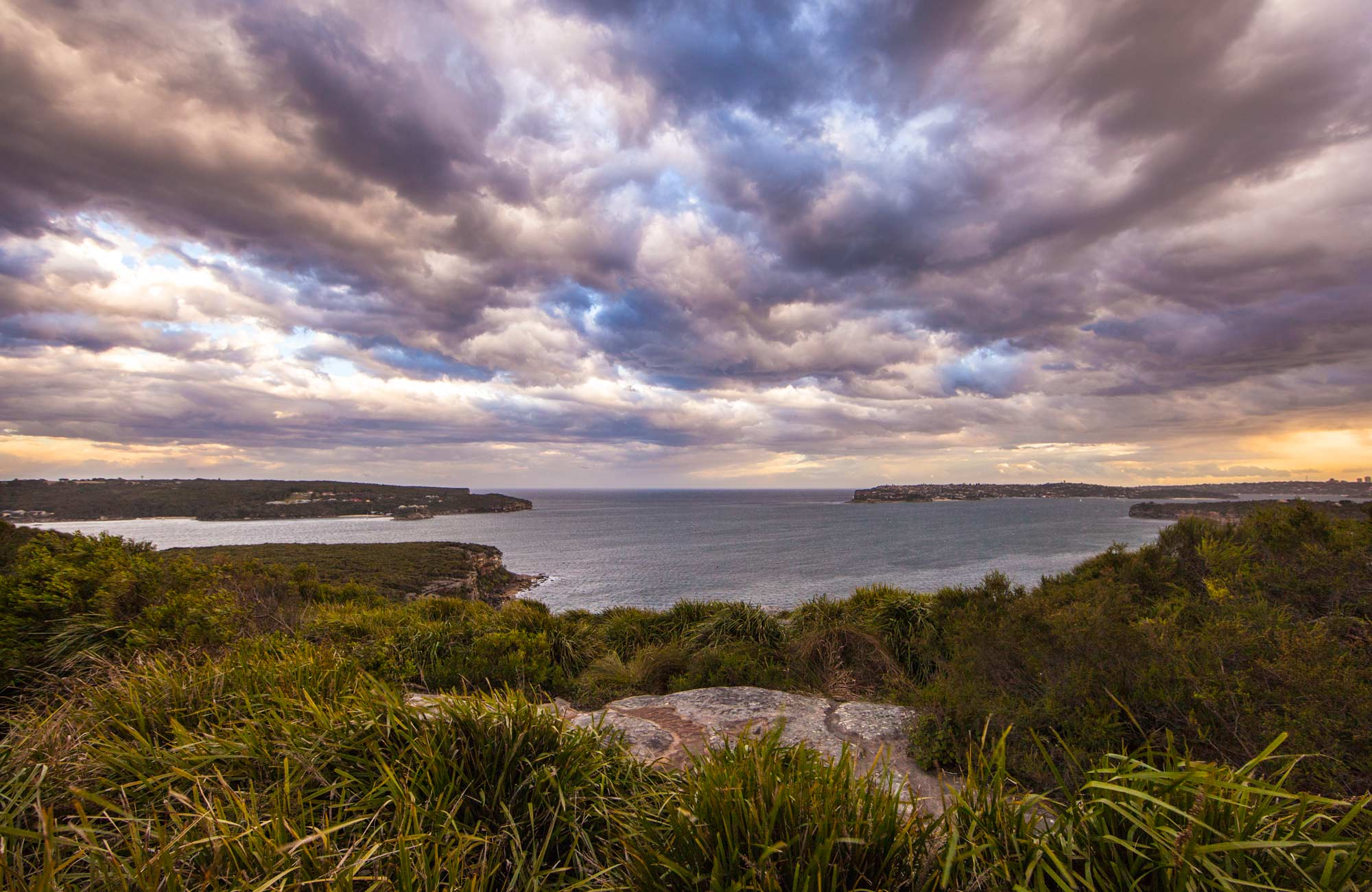 Debroyd Scenic Drive, Sydney Harbour National Park. Photo: David Finnegan