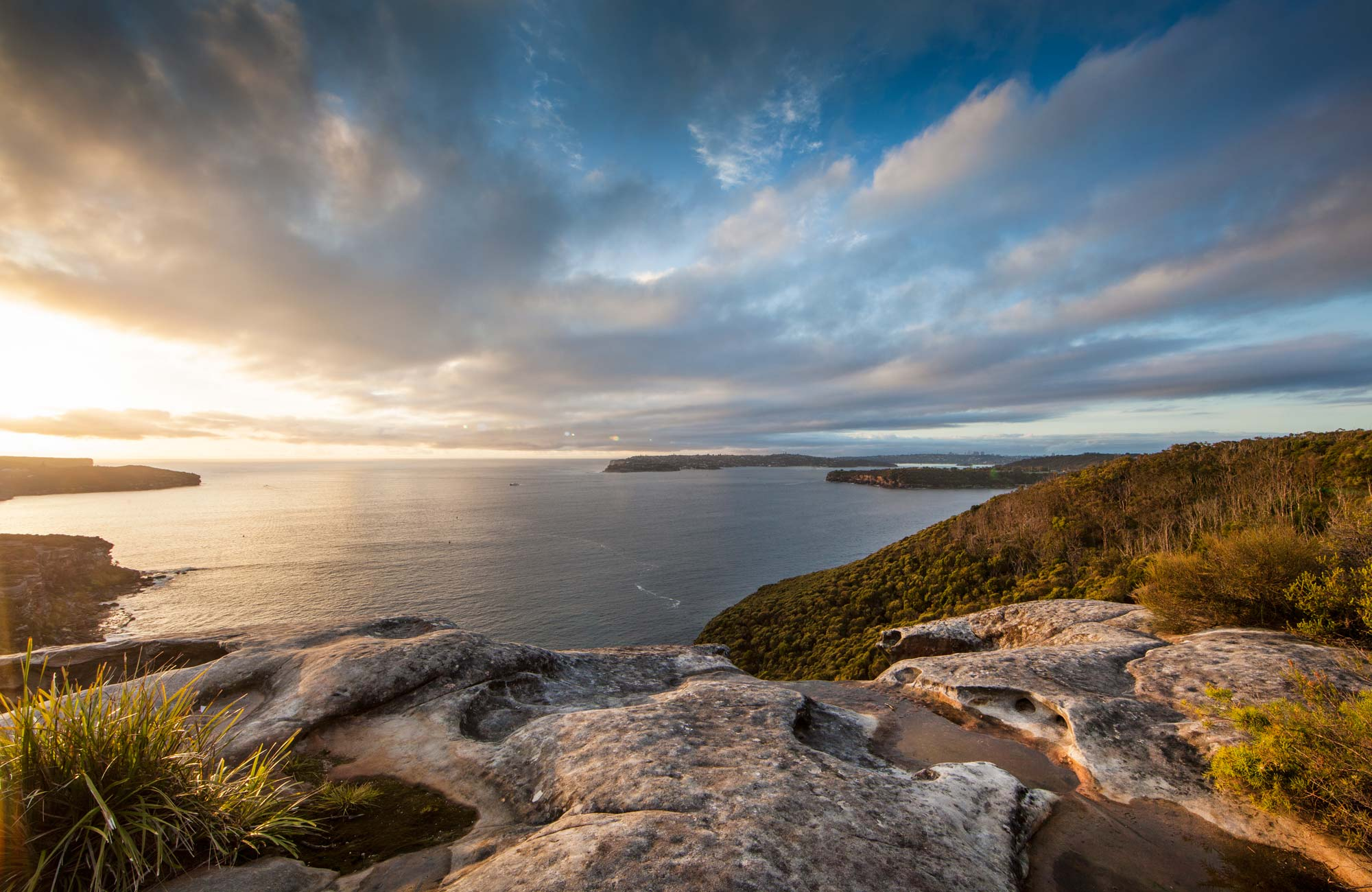 Dobroyd Scenic Drive, Sydney Harbour National Park. Photo: David Finnegan