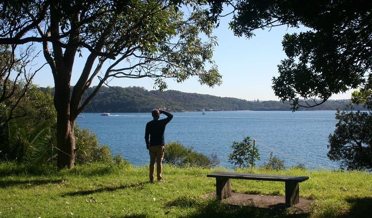 Taking in the view from Bottle and Glass Point, Sydney Harbour National Park. Photo: Natasha Webb/OEH
