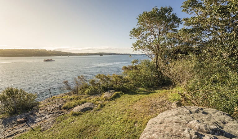 Views over Vaucluse Bay from Bottle and Glass Point, Sydney Harbour National Park. Photo: John Spencer/OEH