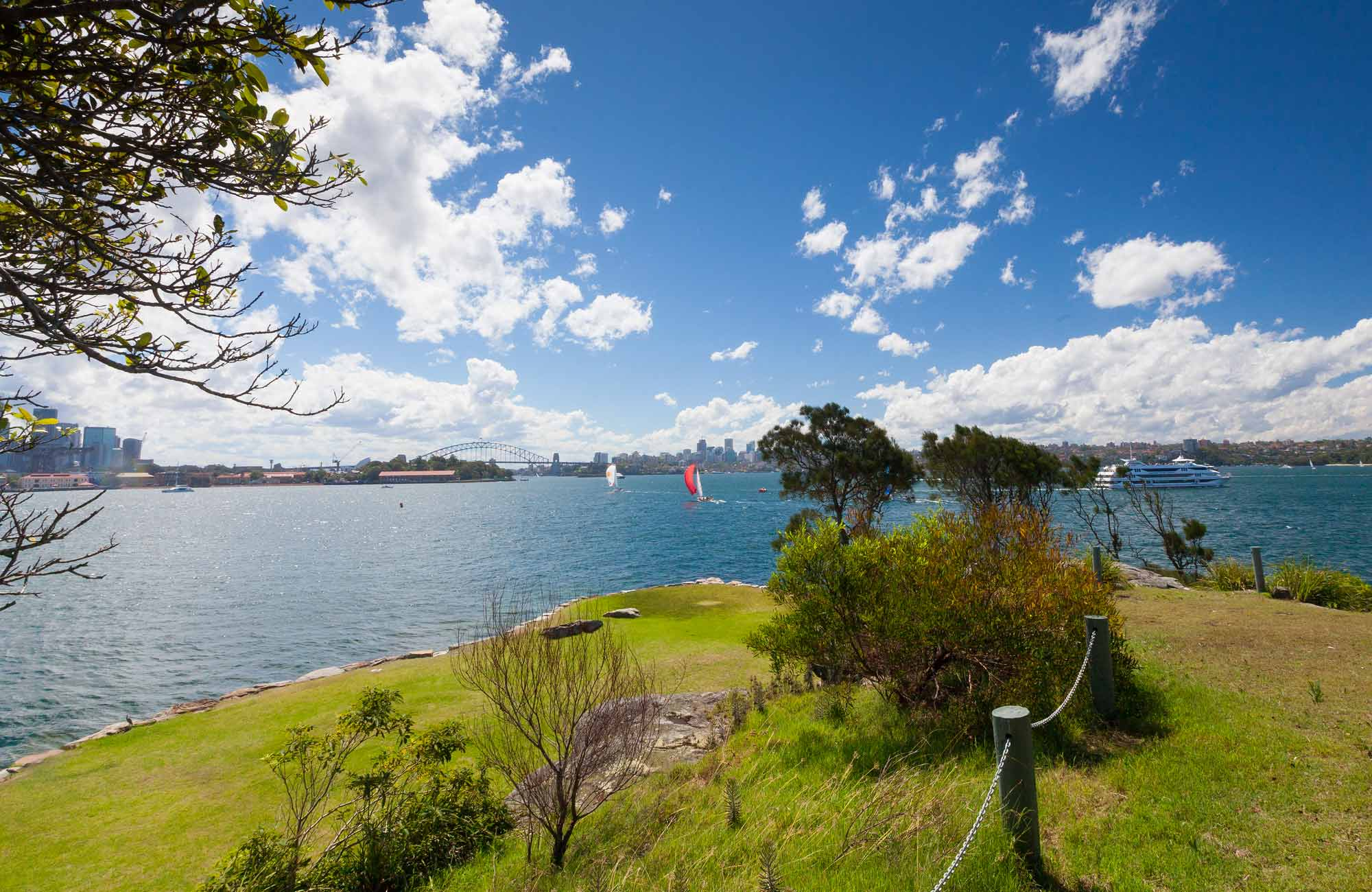 Clark Island, Sydney Harbour National Park. Photo: David Finnegan