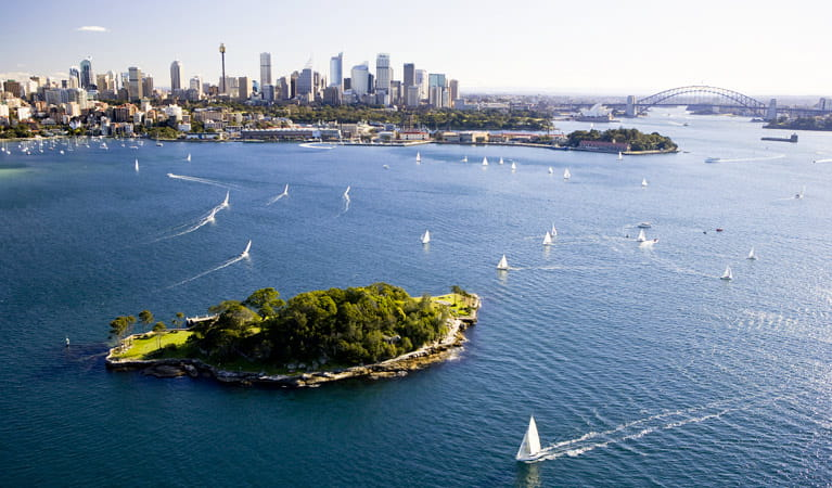 Clark Island, Sydney Harbour National Park. Photo: Hamilton Lund/Tourism NSW