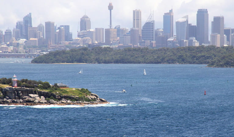 Sydney City skyline view from Fairfax walk. Photo: John Yurasek
