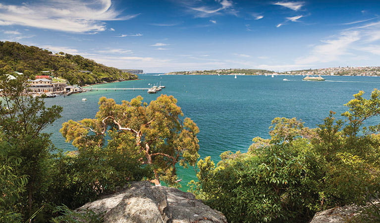 View of Sydney Harbour from Manly scenic walkway in Sydney Harbour National Park. Photo: David Finnegan/DPIE