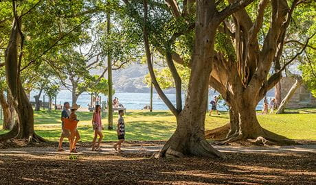 Family walking beneath the trees at Nielsen Park. Photo: John Spencer/DPIE