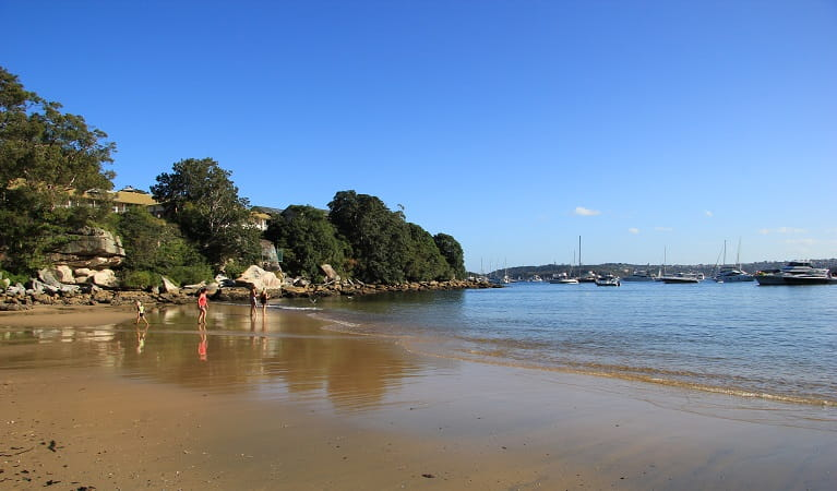 Collins Flat Beach, Sydney Harbour National Park. Photo: Natasha Webb/OEH
