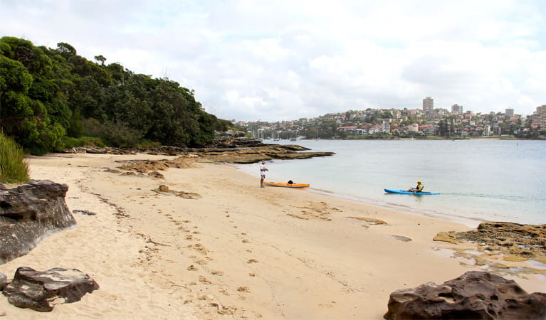 Reef Beach, Sydney Harbour National Park. Photo: John Yurasek/NSW Government