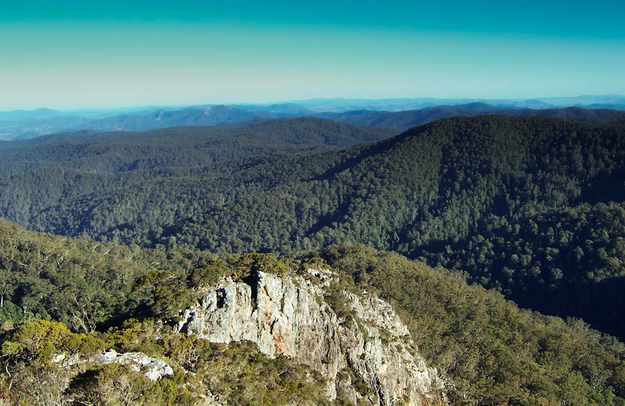 Rowleys Rock lookout, Tapin Tops National Park. Photo: Kevin Carter/NSW Government