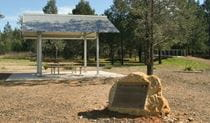 Terry Hie Hie picnic area, Terry Hie Hie Aboriginal Area. Photo: Matthew Bester