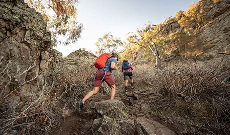 Two men hike up the rocky Yerong walking track in The Rock Nature Reserve - Kengal Aboriginal Place. Photo: Robert Mulally/DPIE