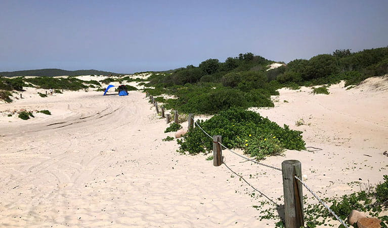 View of sand dunes and dune vegetation alongside a track, with a tent and people in the distance.  Photo: Jim Cutler © DPIE