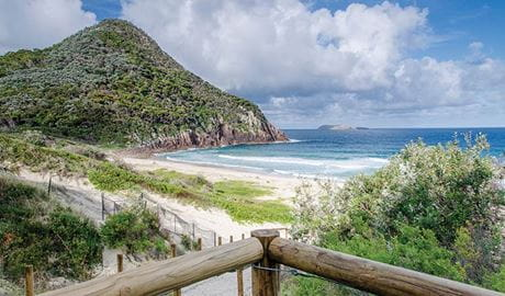 Zenith Beach, below Tomaree Head, Tomaree National Park. Photo: J Spencer/OEH