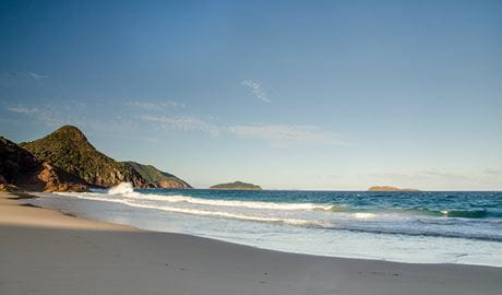 Wreck Beach walk, Tomaree National Park. Photo: John Spencer Copyright:NSW Government