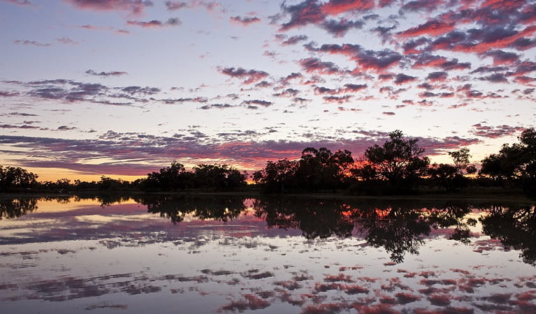 Photo of sunset over the Murray River, Toorale National Park. Photo: M Van Ewijk/OEH
