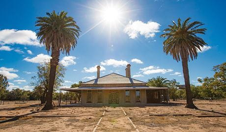 Wide view of Toorale Homestead with palm trees, under a sunny sky. Photo: Joshua Smith/DPIE