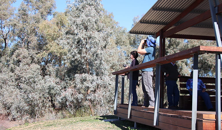 A  group of people watch for birds beneath the shelter of Warrego Floodplain lookout. Photo: Jessica Stokes © DPIE