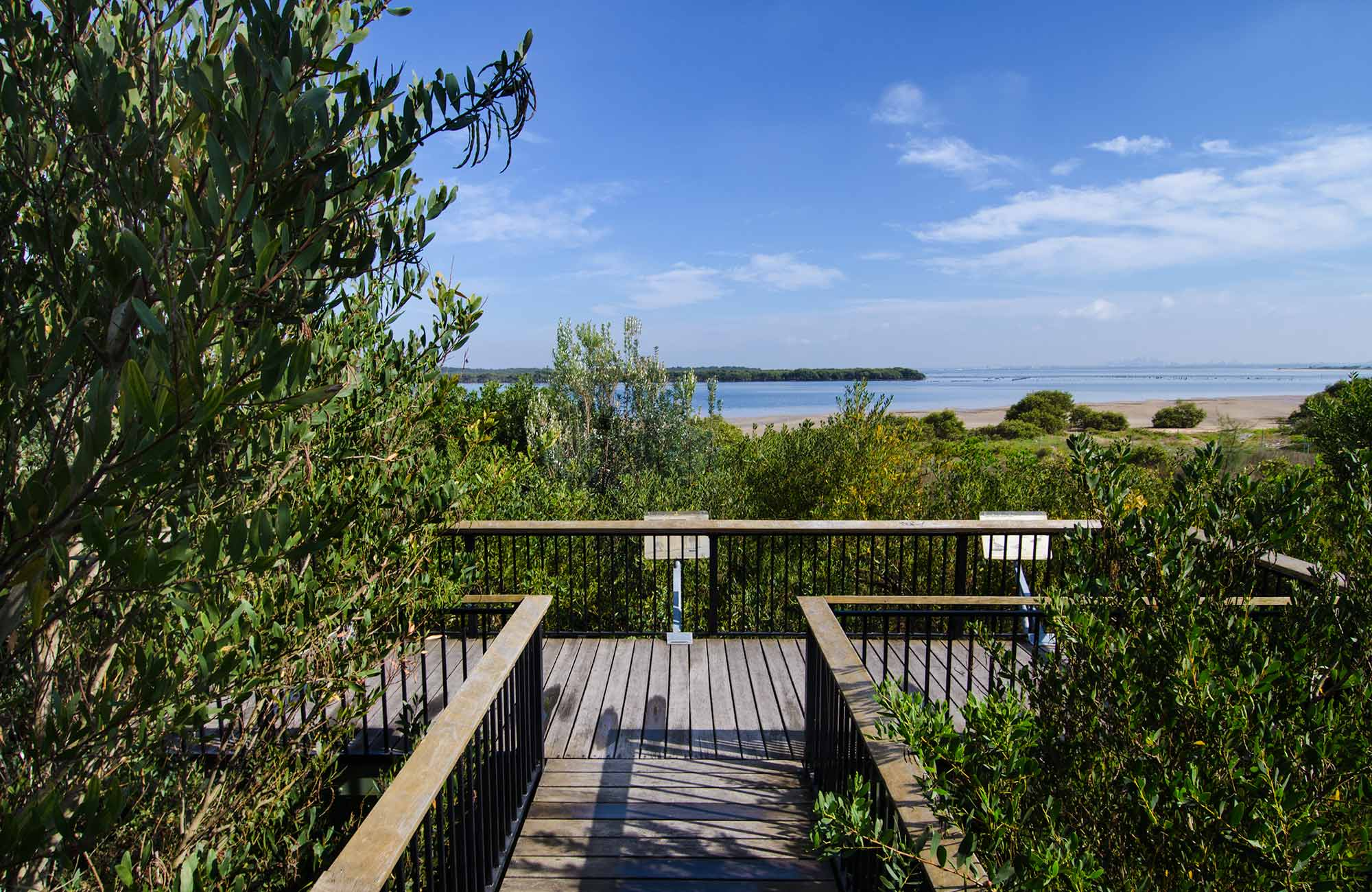 Quibray viewing platform, Towra Point Nature Reserve. Photo: John Spencer/NSW Government