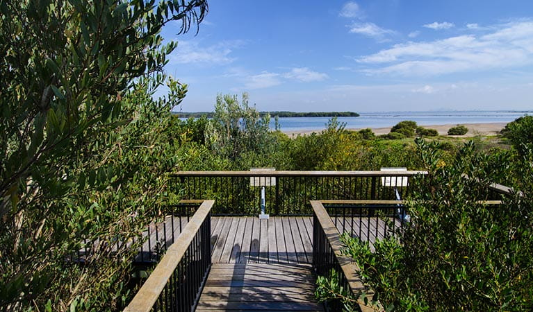 Towra Point Nature Reserve. Photo: John Spencer/NSW Government