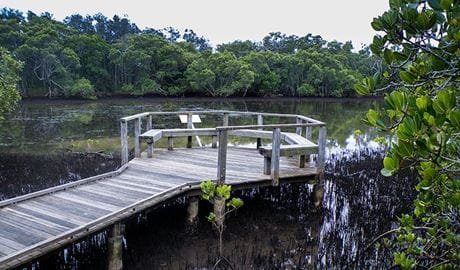 Tweed Head Historical Site, Walk on Water. Photo: NSW Government