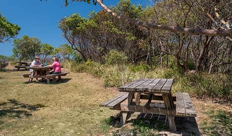 Tyagarah Nature Reserve picnic area, Tyagarah Nature Reserve. Photo: David Young