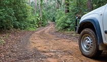 Car touring trail, Ulidarra National Park. Photo: Rob Cleary