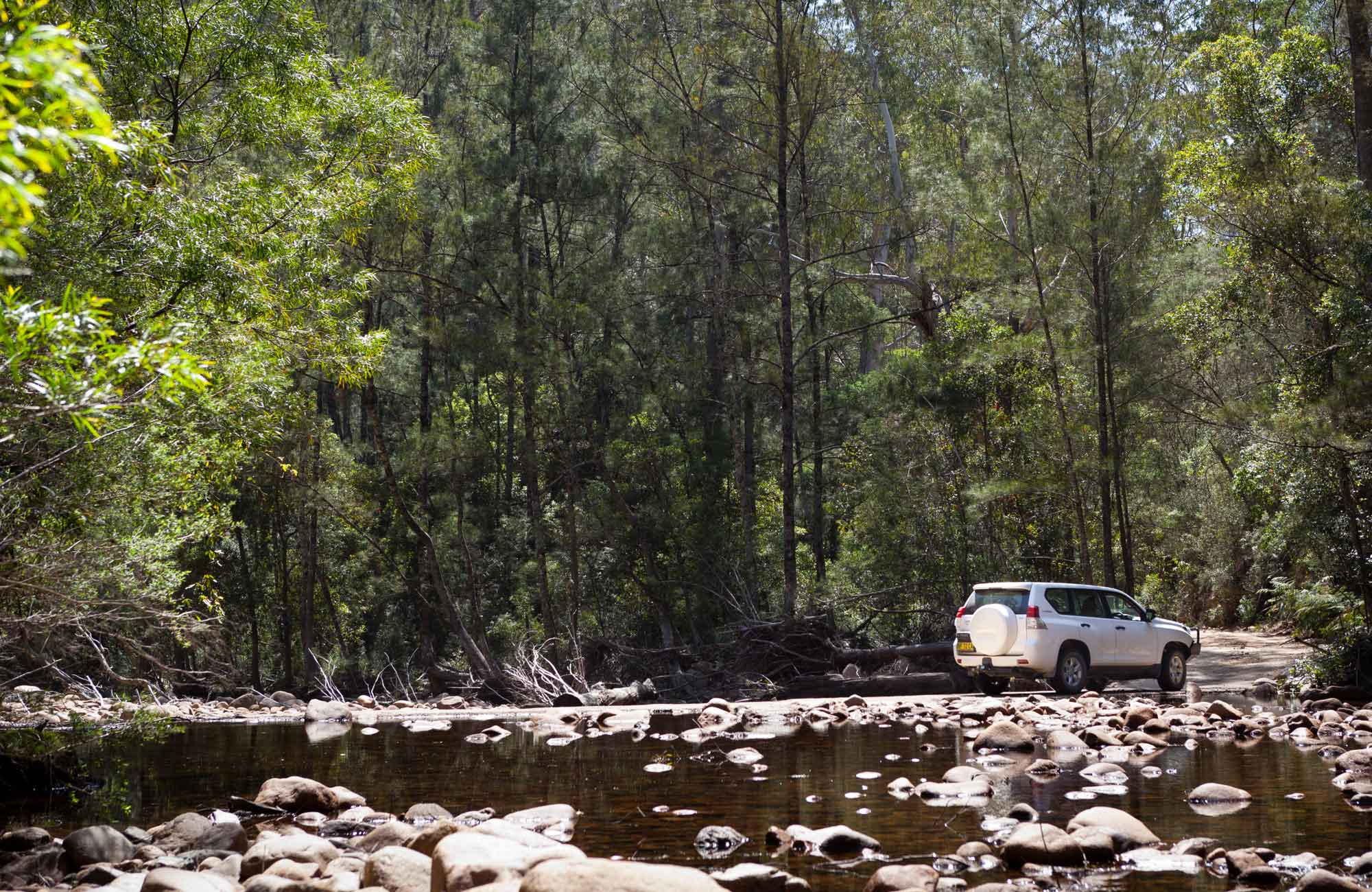 Wadbilliga Crossing, Wadbilliga National Park. Photo: Lucas Boyd Photography/NSW Government