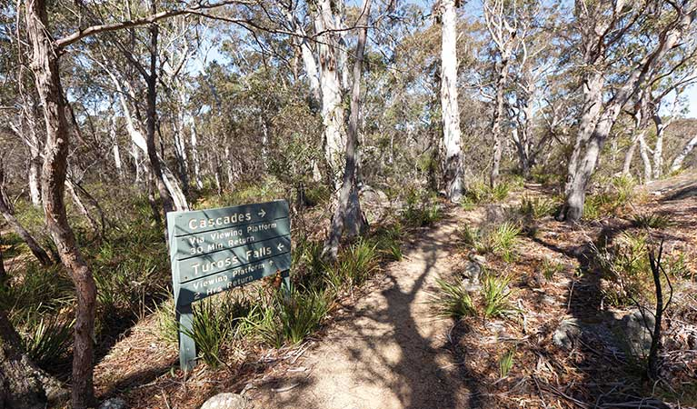 A sign at the start of Cascades walking track, Wadbilliga National Park. Photo: Lucas Boyd/DPIE
