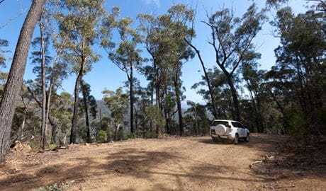 Wadbilliga Road Drive, Wadbilliga National Park. Photo: Lucas Boyd/DPIE